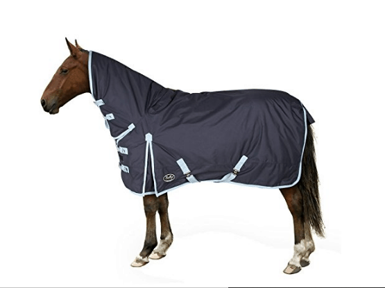 The Best Horse Rugs For Winter Your